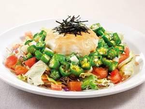豆腐と山芋オクラのねばとろサラダ(L)(S)